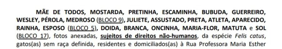 Nomes dos gatos autores da ação na Justiça — Foto: Reprodução/TV Cabo Branco
