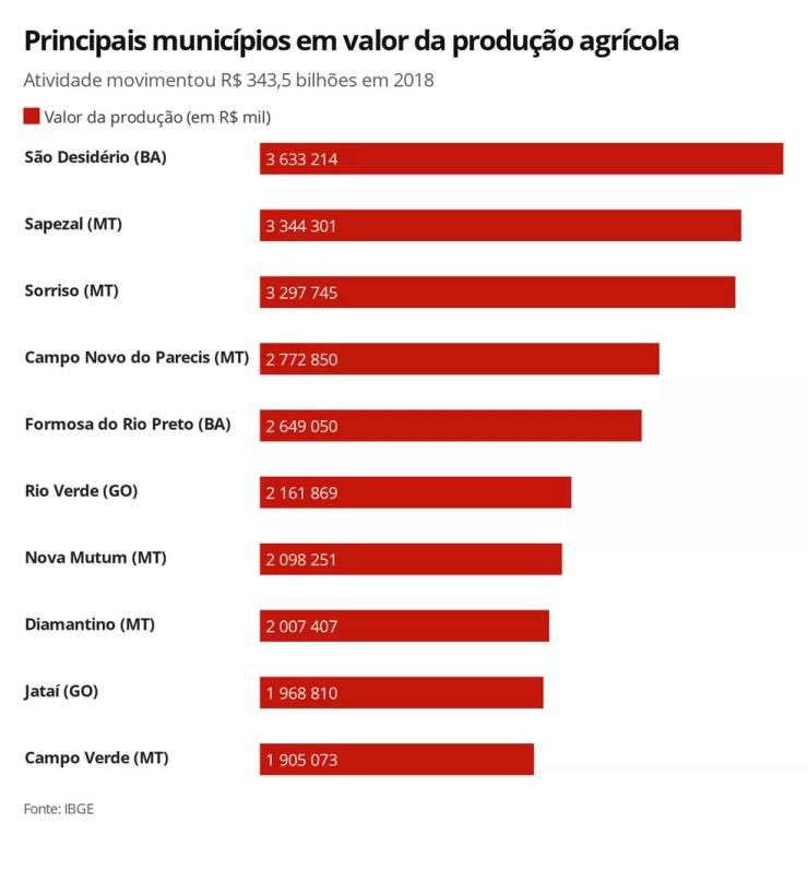 Top-10 municípios produtores, de acordo com o IBGE — Foto: Rikardy Tooge/G1