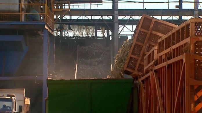 Carretas descarregam cana-de-açúcar em usina na região de Ribeirão Preto (Foto: Paulo Souza/EPTV/Arquivo)