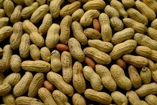Pesquisa revela que expor crianças a amendoim até 5 anos de idade diminui riscos de alergia (Foto: AP Photo/Patrick Sison)