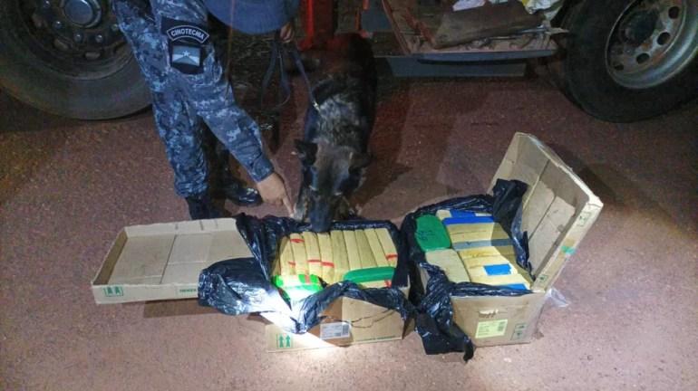 Cão policial encontra mais 110kg de drogas em reboque de carro na BR-425 em Rondônia  — Foto: Polícia Militar de Rondônia/ Divulgação
