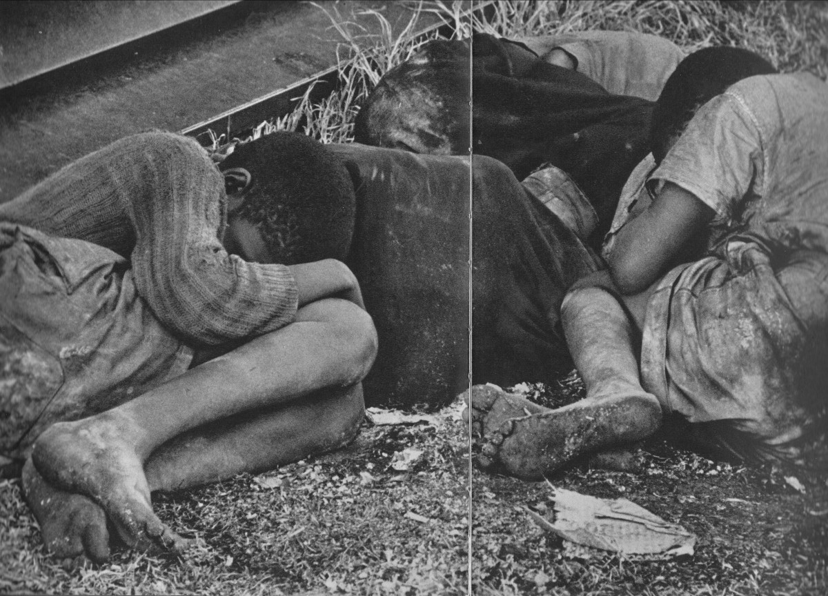 Homeless children who sleep anywhere, in drainpipes, junk yards, and anywhere. In this picture, taken at dawn, they lay shivering in a park.