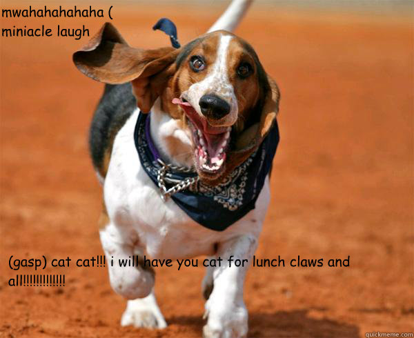 basset hound coloring pages memes