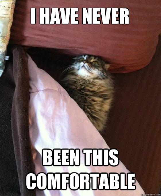 Image result for bed meme comfy