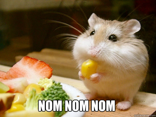 Image result for nom nom nom mouse quick meme