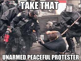 Image result for police state meme