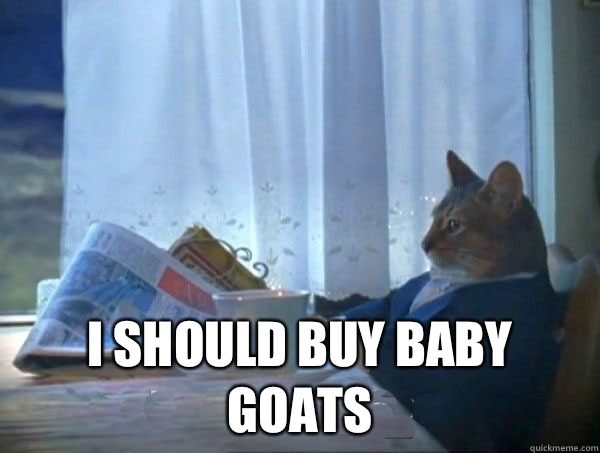 Image result for goat meme