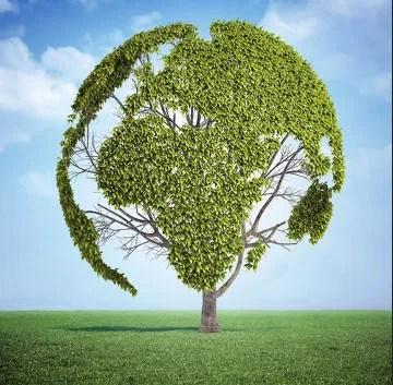 O Dia Mundial do Meio Ambiente é comemorado no dia 05 de junho.
