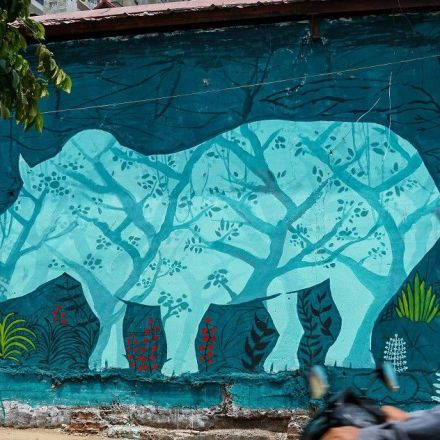 A graffiti campaign in Ho Chi Minh city aims to educate locals about rhino conservation.
