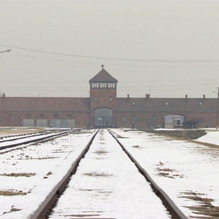 Auschwitz death camp: Poland puts database of prison guards online