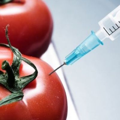 First GMO ever produced by genetic engineering poisoned thousands of Americans