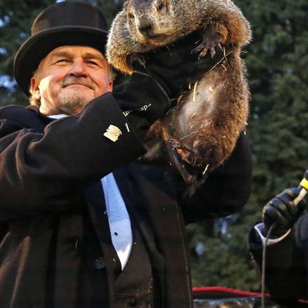 Punxsutawney Phil sees shadow, predicts 6 more weeks of winter