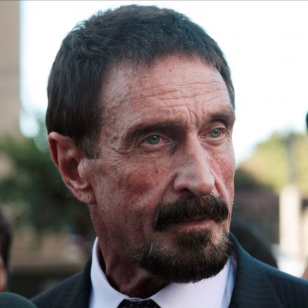JOHN MCAFEE: The NSA's back door has given every US secret to our enemies