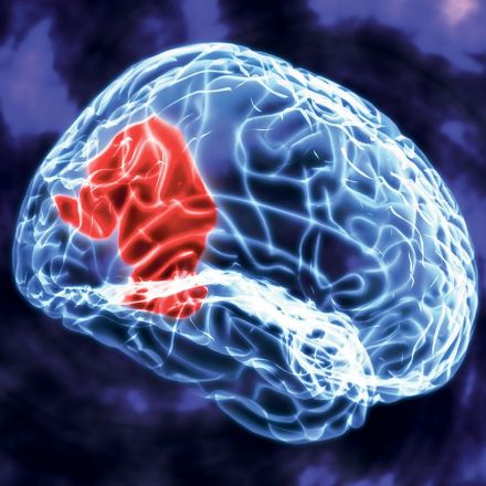 "Scientists ""Switch Off"" Self-Control Using Brain Stimulation"