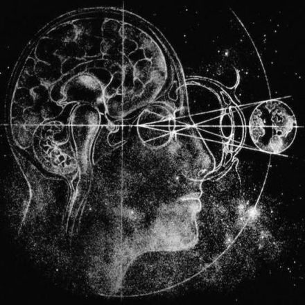 Can Many-Worlds Theory Rescue Us From Boltzmann Brains?