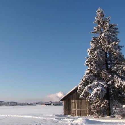 Tax-free, guaranteed basic income of 560 Euro moving forward in Finland