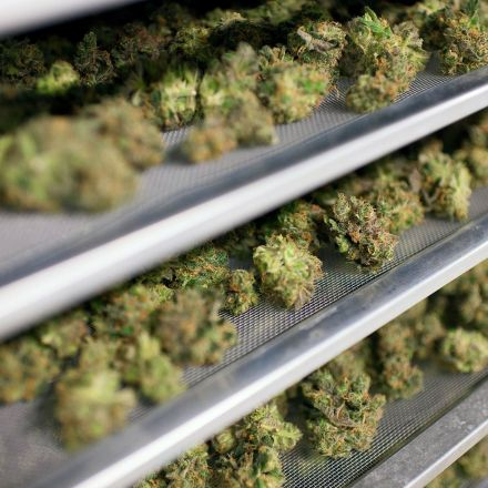 The Average Legal Pot User Spends $647 a Year on Weed