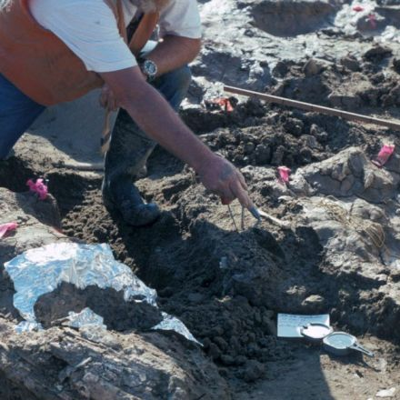 Broken Bones Could Rewrite Story of the First Americans