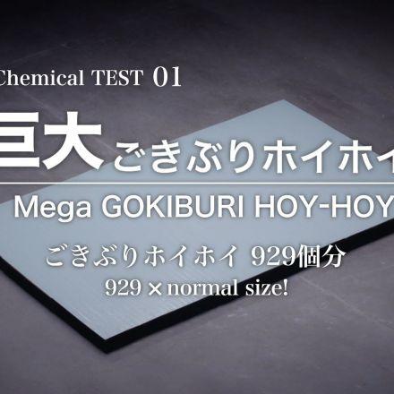 Mega GOKIBURI HOY-HOY ad
