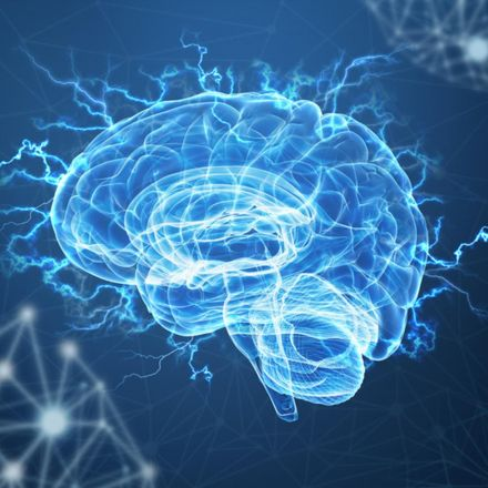 Scientists say religious fundamentalism could be caused by a brain injury
