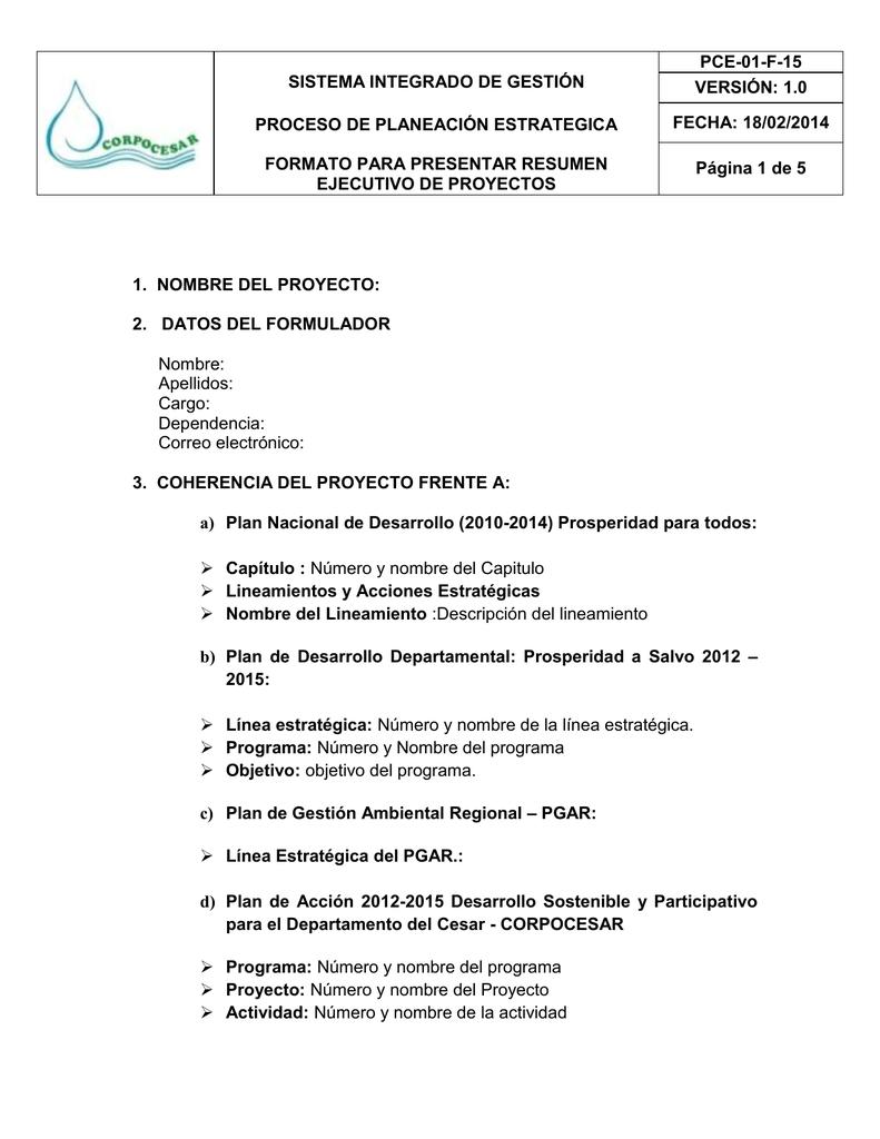 formato para presentar resumen ejecutivo de proyectos pce