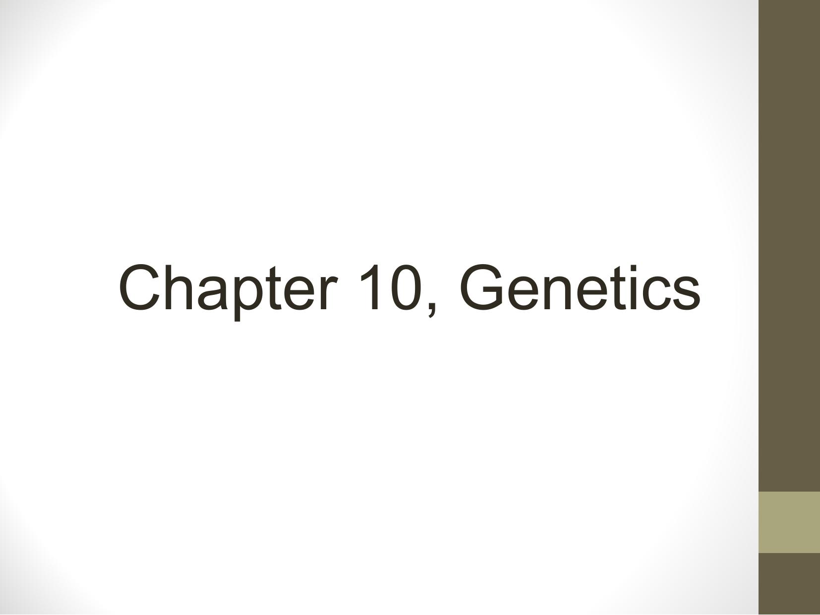 Chapter 10 2 And 10 3 Basic Mendelian Genetics