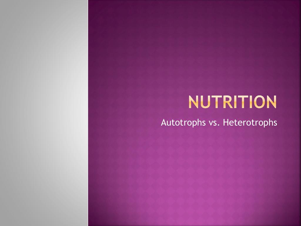 Nutrition Autotrophs Vs Heterotrophs