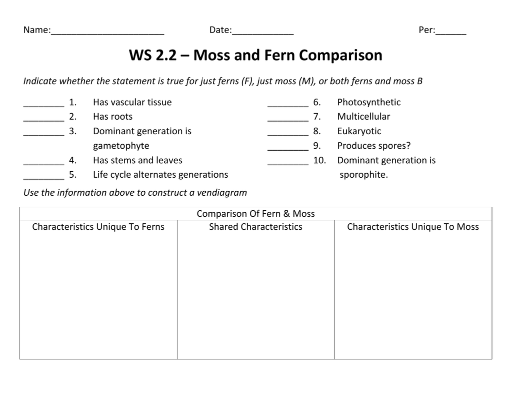 Ws 2 2 Moss And Fern Comparison