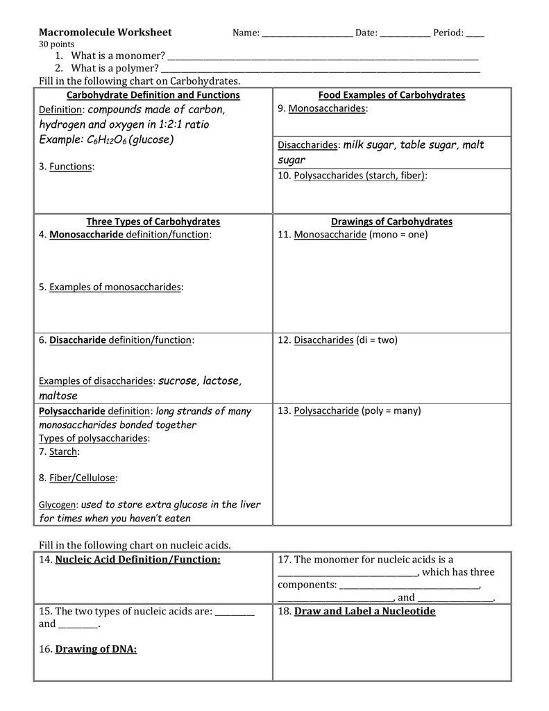 Macromolecule Worksheet 3