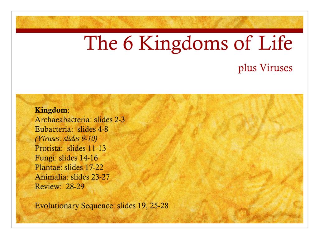 The 6 Kingdoms Of Life Plus Viruses