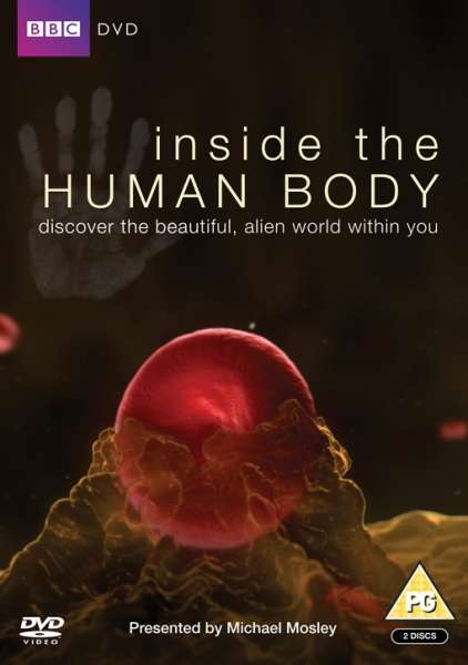 Inside The Human Body IWOOT