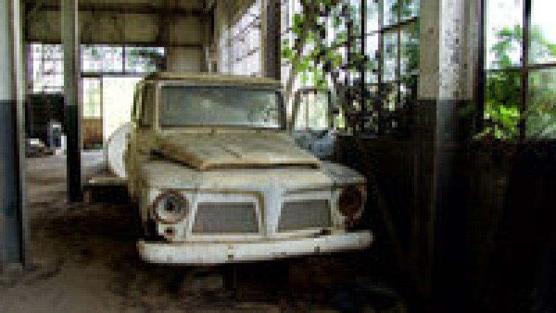 Заброшенная Фордландия: почему не сбылась американская мечта Генри Форда