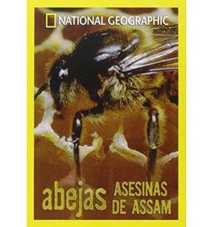 Abejas asesinas de Assam NatGeo (1999) [DVDRIP]