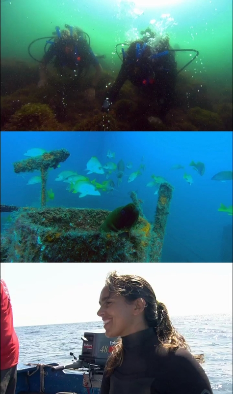 Expedición Océanos BBC [2009] [8/8] [DVDRip]