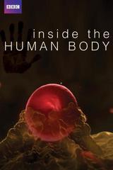 En el interior del cuerpo humano [2011] [4/4] [WEBDL]