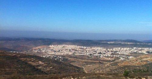 Image result for Etzion bloc