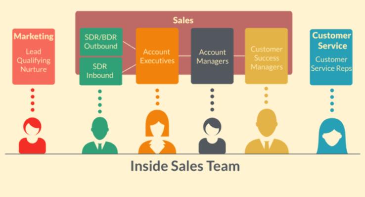 Sales team members