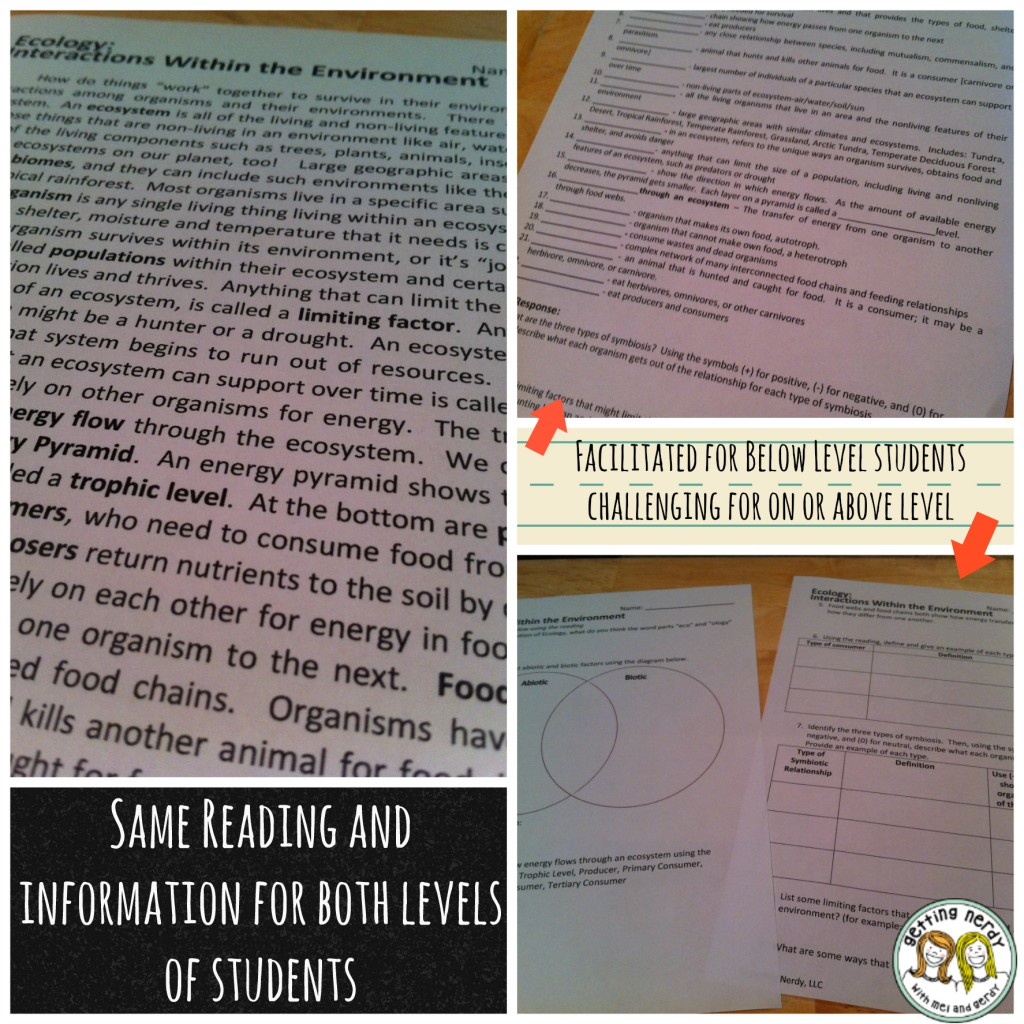 Ecology Interactions Within The Environment Worksheet