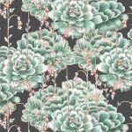 Succulents Wallpaper Stunning Cactus Design Milton King Usa