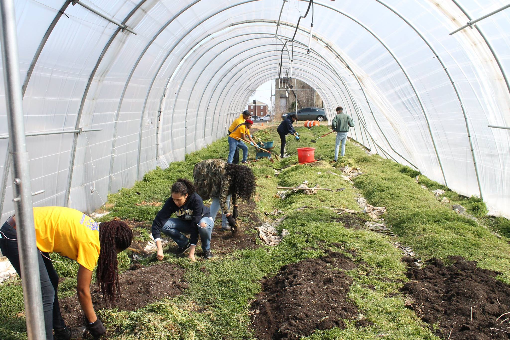 Strength to Love 2 farm's urban hoop house. Oakwood University volunteers helping us farm.