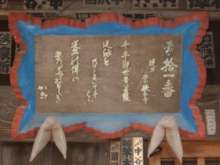 sashima11-3.jpg