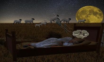 失眠睡不著!9招啟動睡意,讓你不再數綿羊