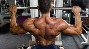 肩胛骨的秘密-對體態的3大影響