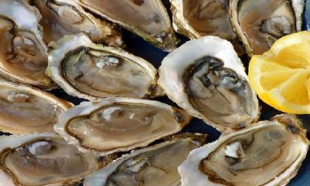 生猛海鮮別亂吃!注意這些事才能避免病從口入!