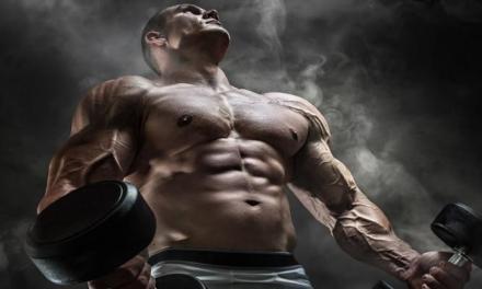 破解三大迷思,告訴你為什麼不用害怕肌肉