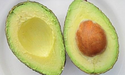 【好文回顧】高熱量的酪梨也能拿來減肥嗎?