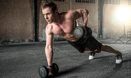 訓練動作,而不是單一肌肉
