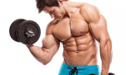成功訓練的4大要素,你做了幾項?