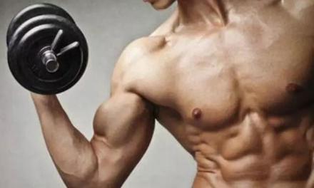 五個增肌增重的訓練原則(一)
