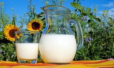 一張表格搞懂乳製品